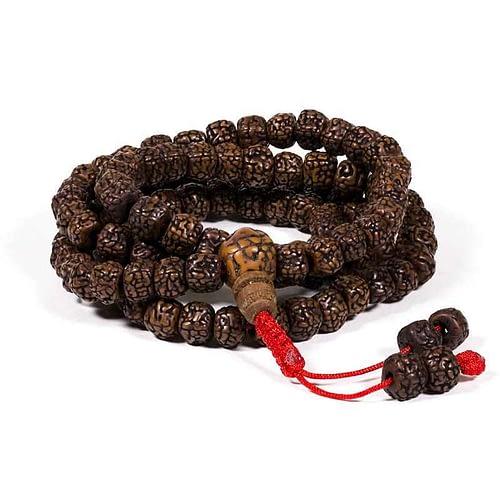 Mala poliert Rudraksha 108 Perlen