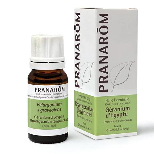 Pranarom Ätherisches Öl Geranium