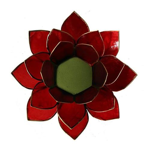 Lotus Licht Chakra 1 rot Goldrand