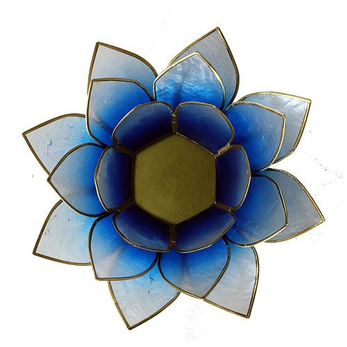 Lotus atmospheric light blue white gold trim