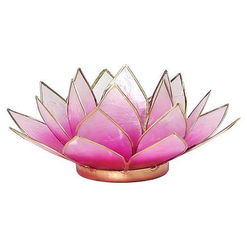 Lotus atmospheric light pink gold trim